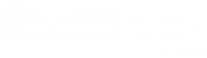Blomberg appliances logo